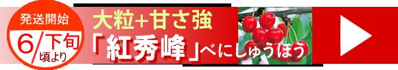 山形東根産さくらんぼ紅秀峰