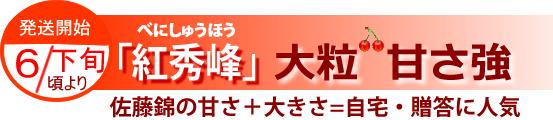 山形さくらんぼ「紅秀峰」6月下旬より発送