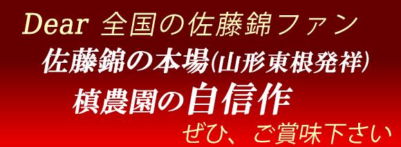 槙農園自信作さくらんぼ佐藤錦山形東根産
