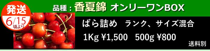 山形さくらんぼ格安セット香夏錦(こうかにしき、槙農園