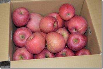 りんご「ふじ」バラ詰10Kg